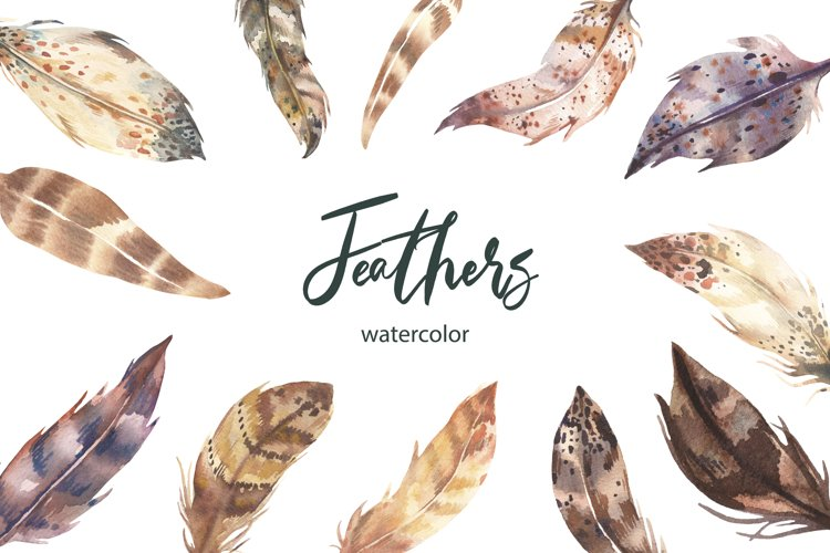 Watercolor Feathers Illustration. example image 1