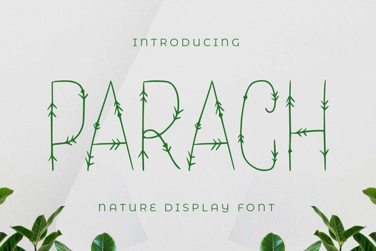 Parach Font example image 1