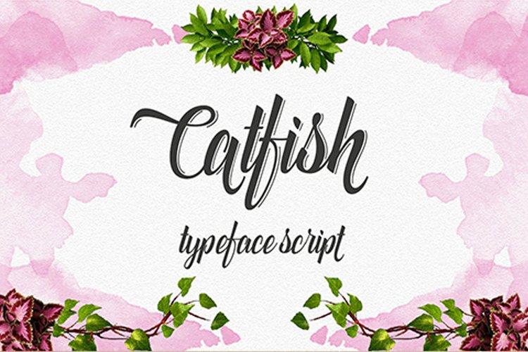 Catfish example image 1