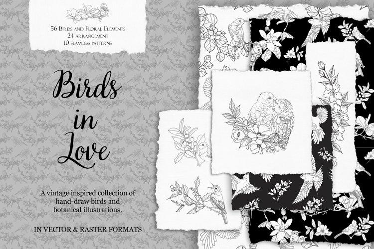 Vintage Birds and Botanical Illustrations