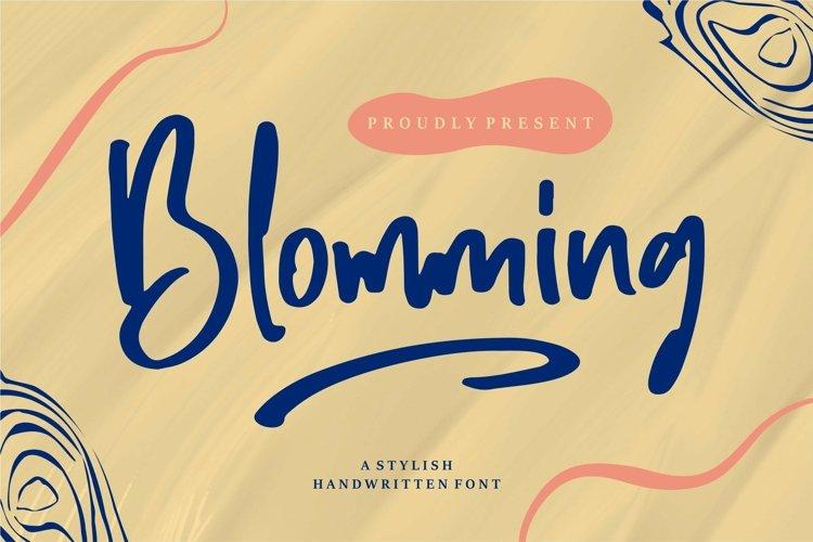 Web Font Blomming - A Stylish Handwritten Font example image 1