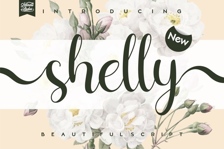 shelly - Beautiful Script Font example image 1