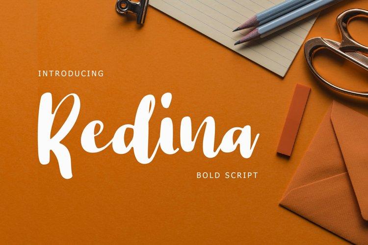 Redina Bold Script Font example image 1