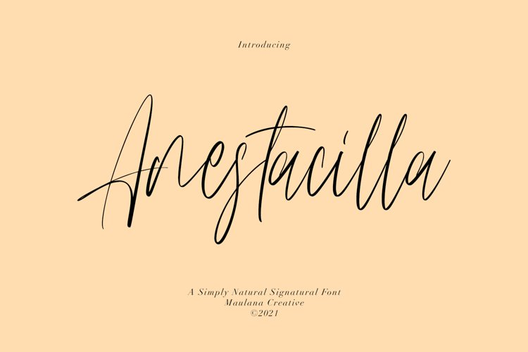 Anestacilla Girly Signature Font example image 1