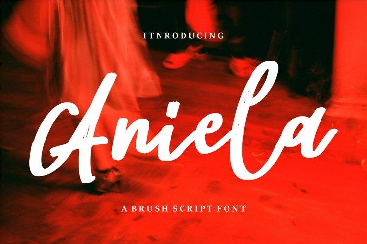 Aniela - A Brush Script Font example image 1