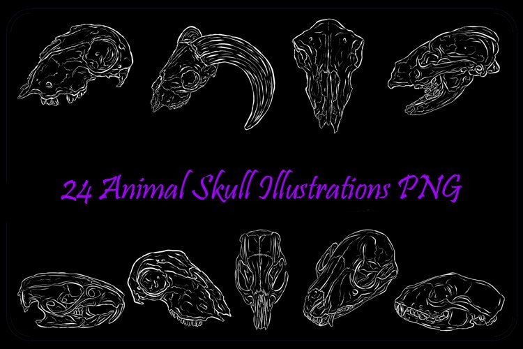 Animal Skull Halloween Line Art White outine by Squeeb Creative