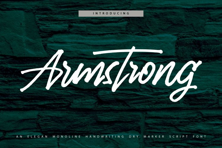 Web Font Armstrong - Monoline Handwriting Script Font example image 1