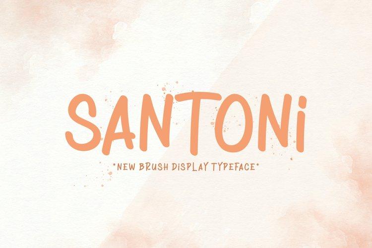 Santoni example image 1