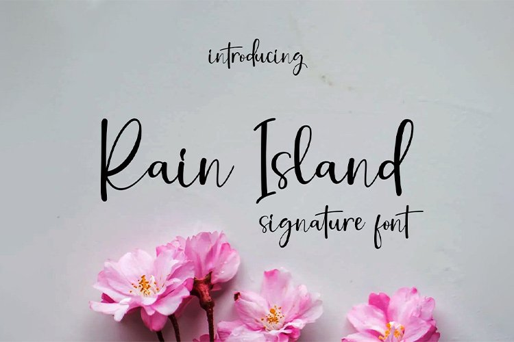Rain Island || signature font example image 1