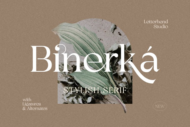 Binerka - Stylish Serif Font example image 1