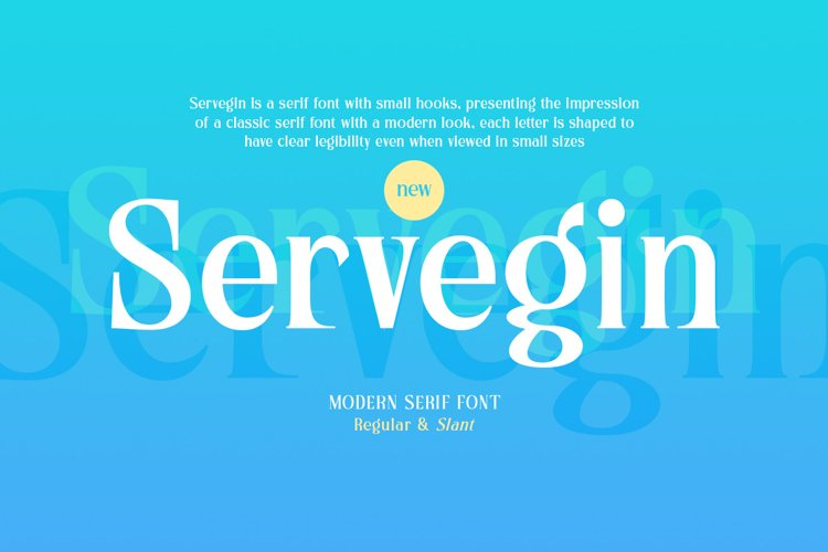 Servegin - Modern Serif Font example image 1