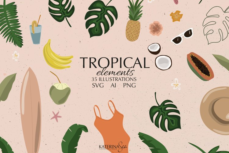 Tropical illustrations vector