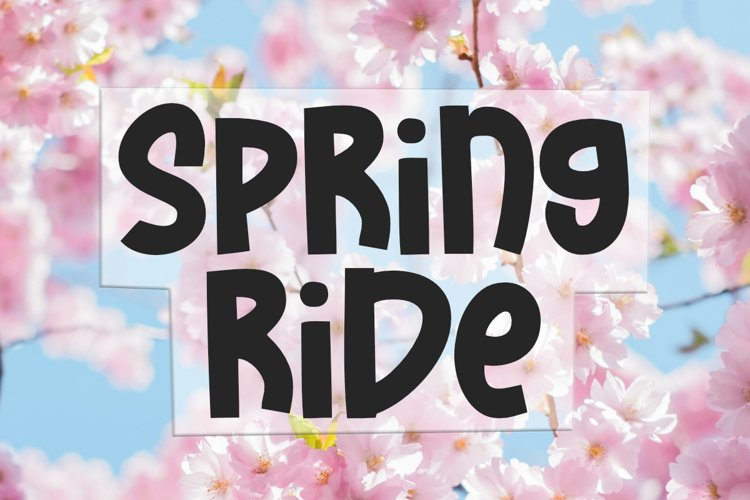 Spring Ride - Bold Display Font example image 1