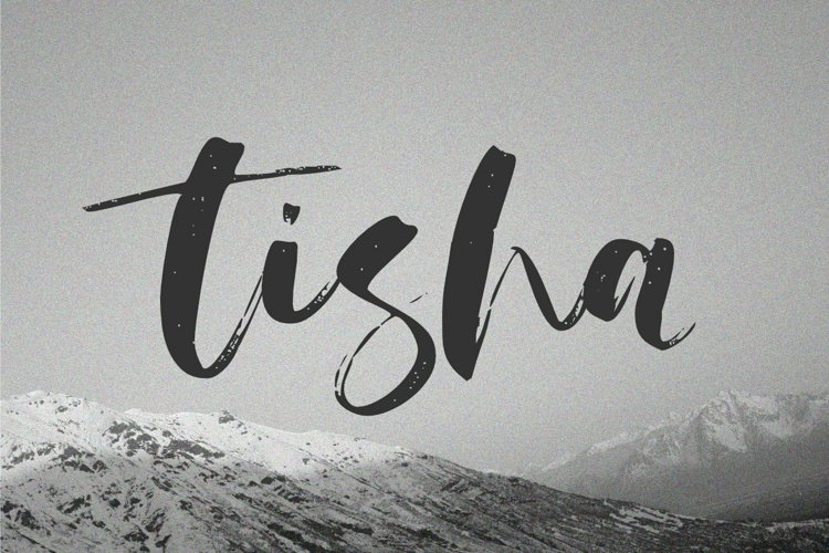 Tisha - Brush Script Font example image 1