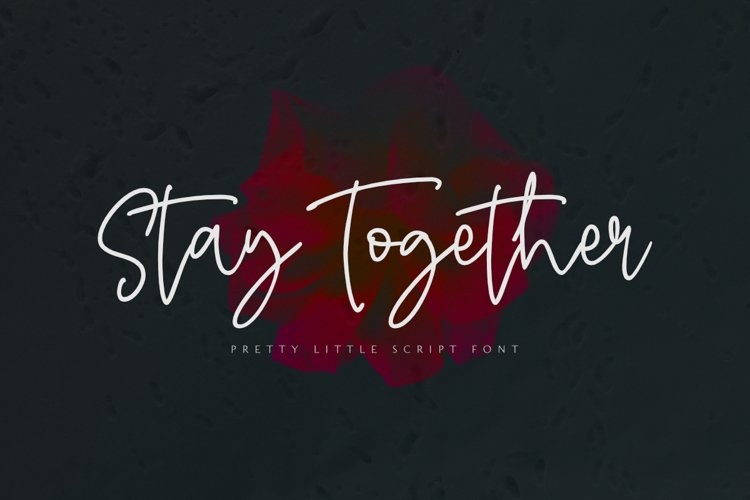 Stay Together - A Stylish Script Font example image 1