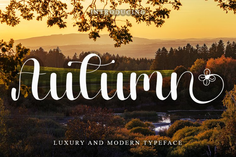 Autumn - Luxury and Modern Font example image 1