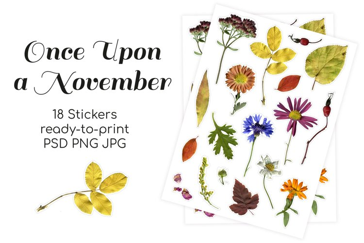 Fall flowers, herbs and leaves printable stickers
