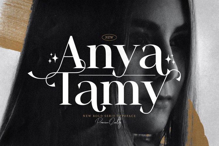 Anya Tamy - Classic Serif Font example image 1