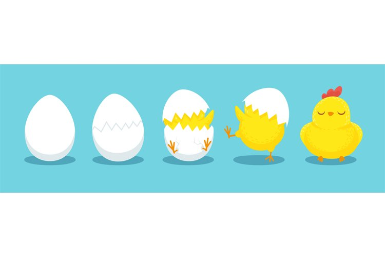 Chicken hatching. Cracked chick egg, hatch eggs and hatched example image 1