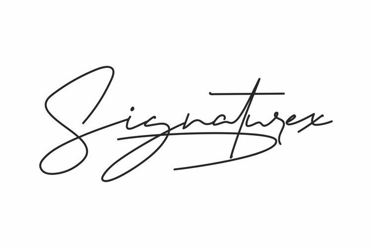 Signaturex example image 1