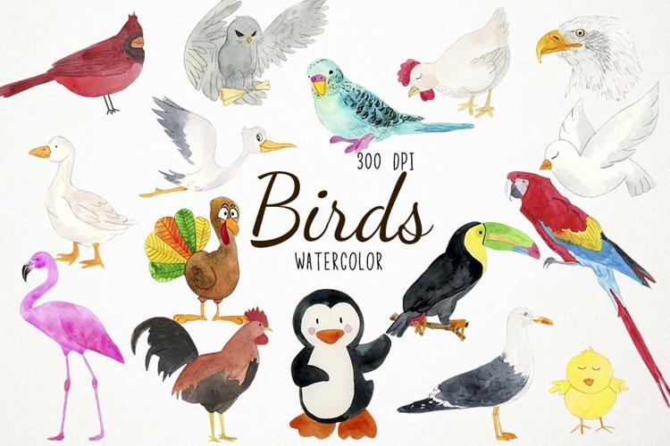 Watercolor Birds Clipart, Birds Clip Art, Birds Illustration example image 1