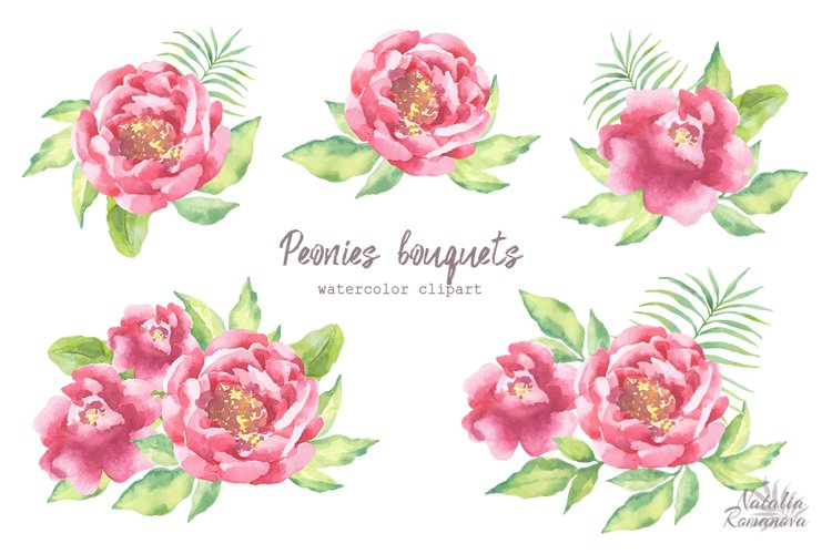Watercolor Peonies set - Free Design of The Week Design2