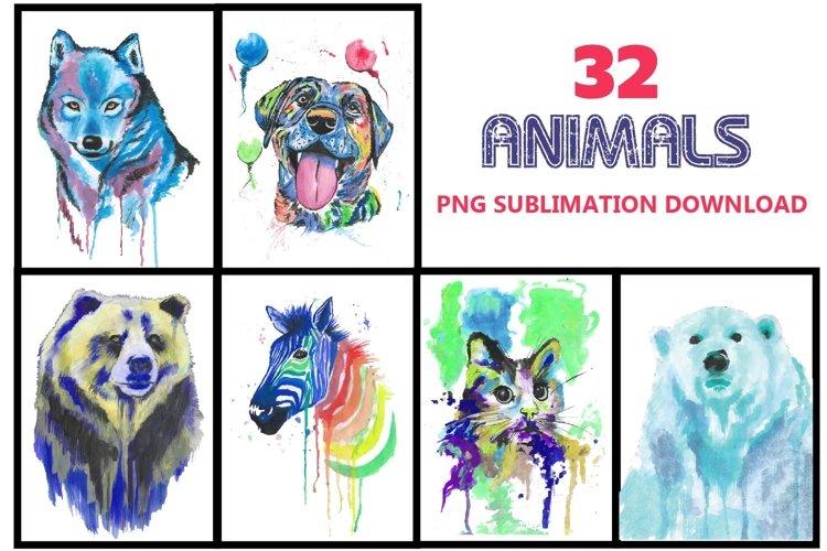 Animals png, animal sublimation, Dog, cat,zebra,bear,fox - Free Design of The Week Font