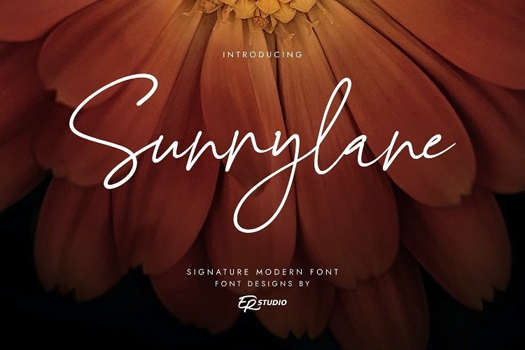 Sunnylane example image 1