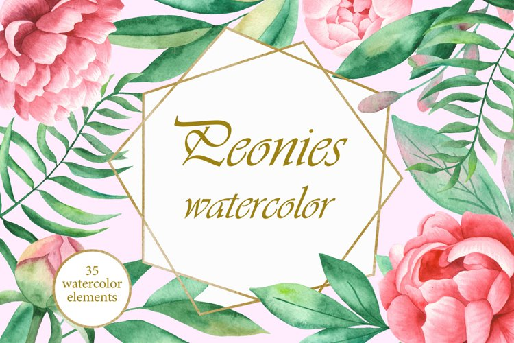 Peonies watercolor clipart. Peony wreaths, frames, patterns