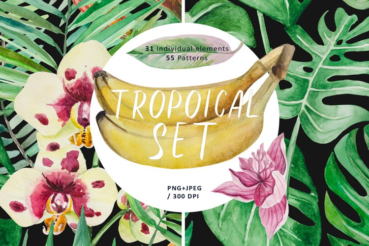 Tropical set example image 1