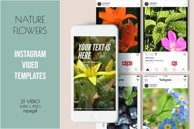 Instagram Video Templates. Nature flowers