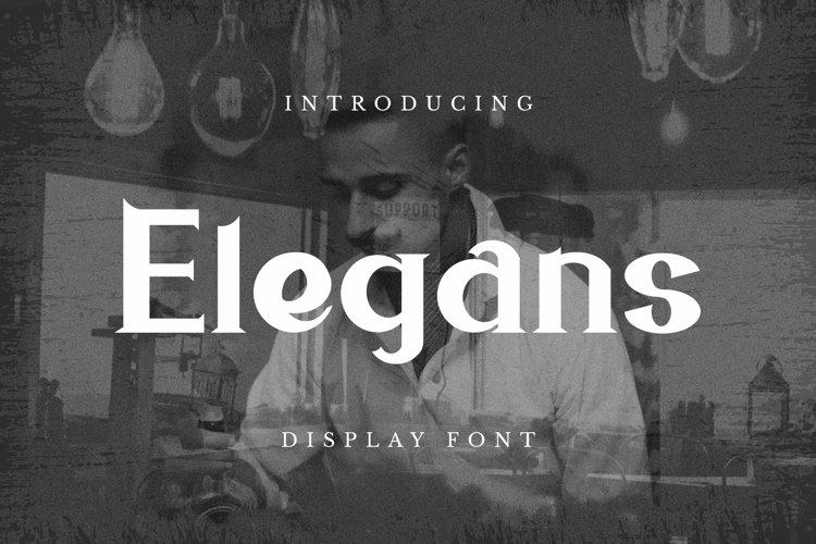 Web Font Elegans Font example image 1