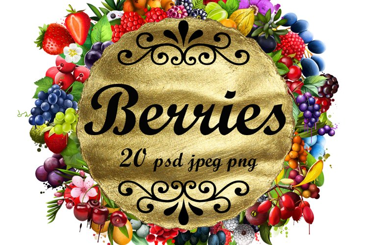 Berries digital art collection 2. 20 illustrations example image 1