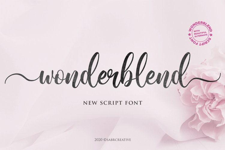 Wonderblend example image 1