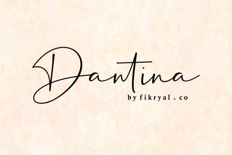 Dantina//handwritten font example image 1