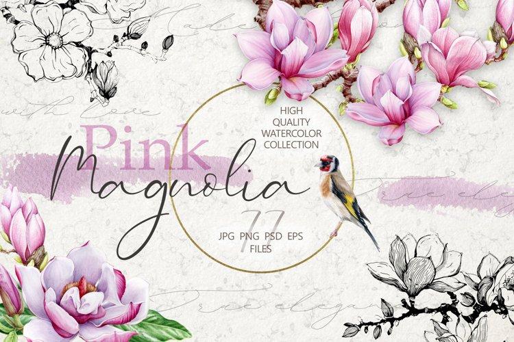 Pink Magnolia Watercolor Collection, Botanical Flower Set