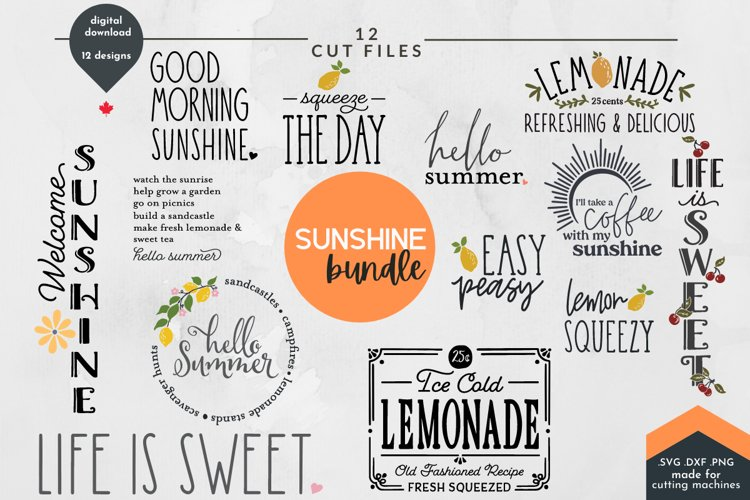 Summer SVG Bundle - Summer Cut Files, 12 designs
