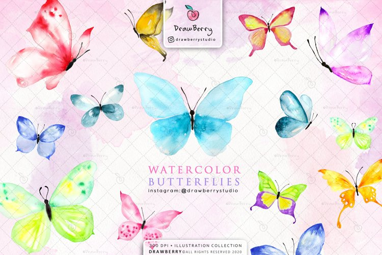 Watercolor Butterfly Clipart Hand Painted   Drawberry CP004 example image 1