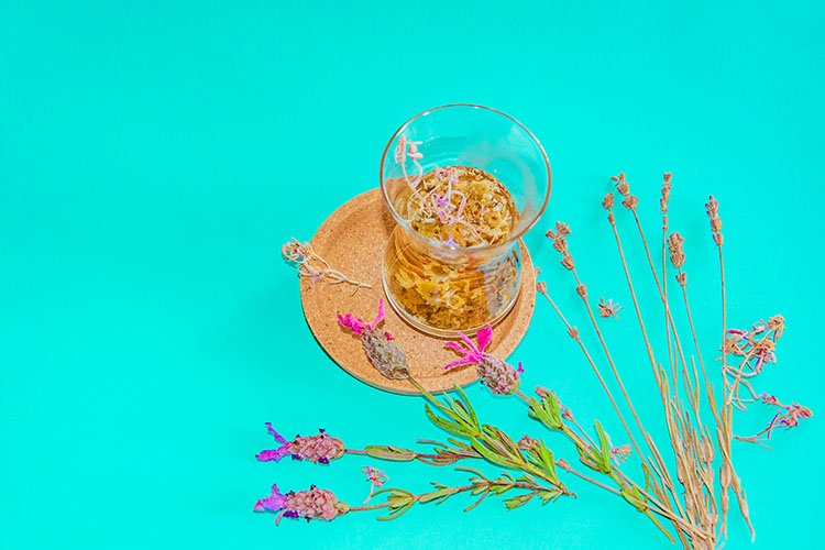 Cup of herbal tea with chamomile flowers. example image 1