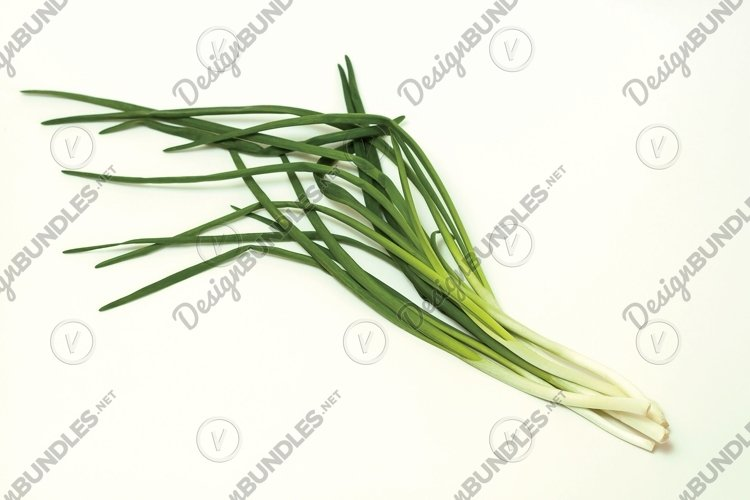 Green onions on white background.