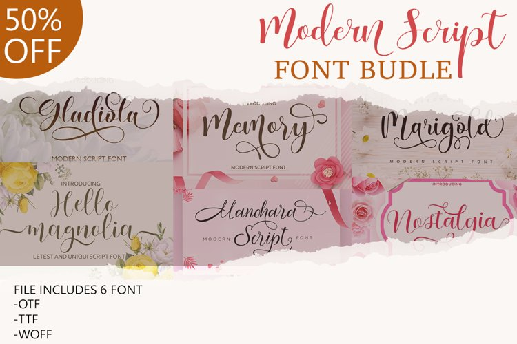 Modern Script Font Budle example image 1