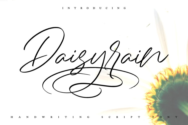 DaisyRain | Handwriting Script Font example image 1