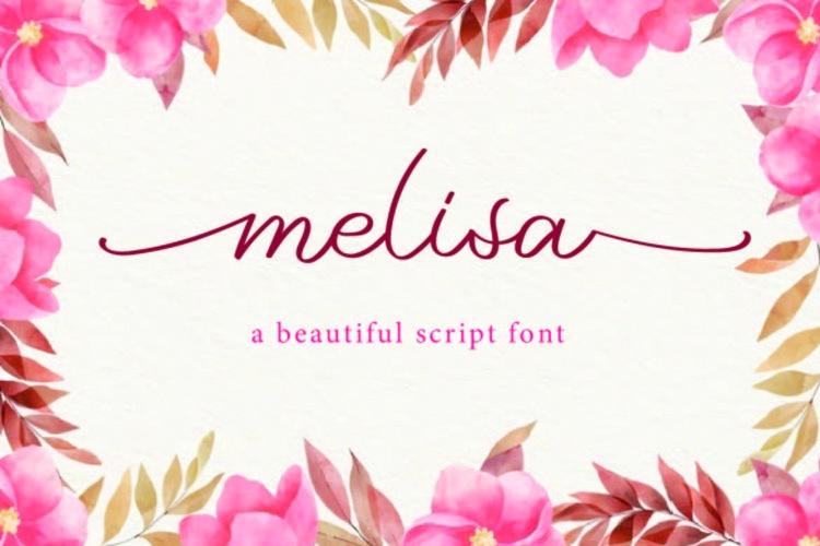 melisa example image 1