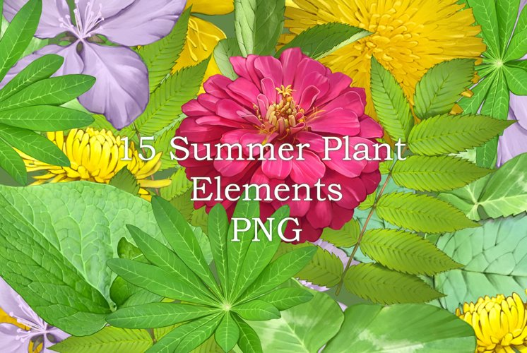 15 summer plant elements PNG example image 1