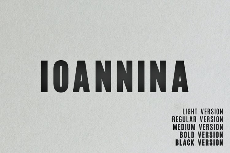 Ioannina Sans Serif Family example image 1