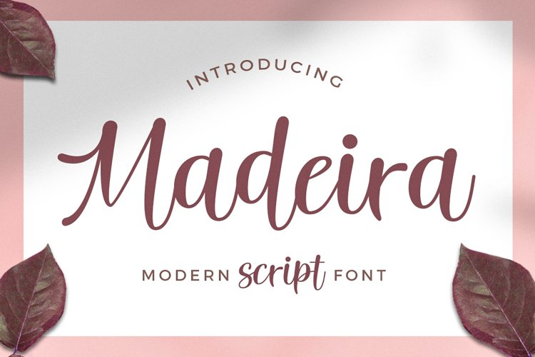 Madeira Script example image 1