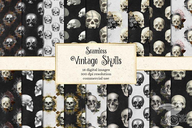 Vintage Skulls Digital Paper example image 1
