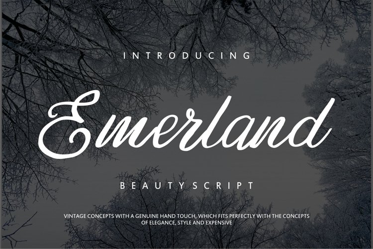 Emerland | Beauty Script Handwritten example image 1