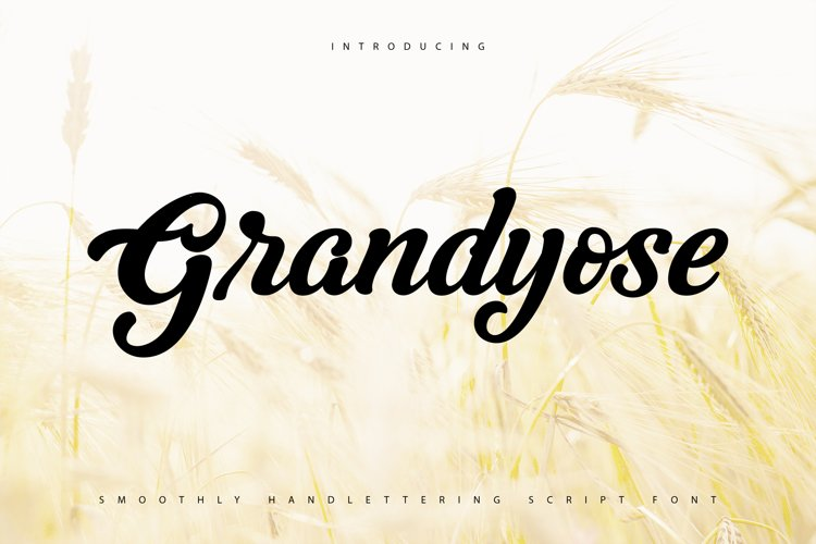 Grandyose   Smoothly Handlettering Script Font example image 1