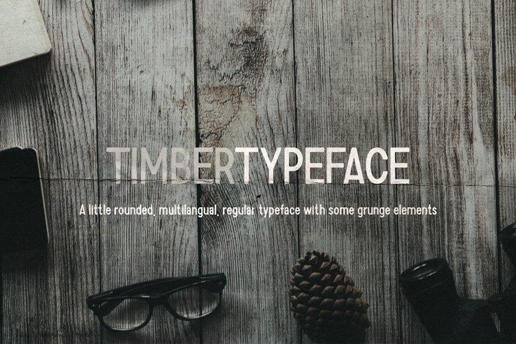 Grunge fonts Bundle example 6